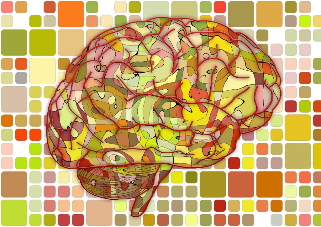 brain-951871_1920